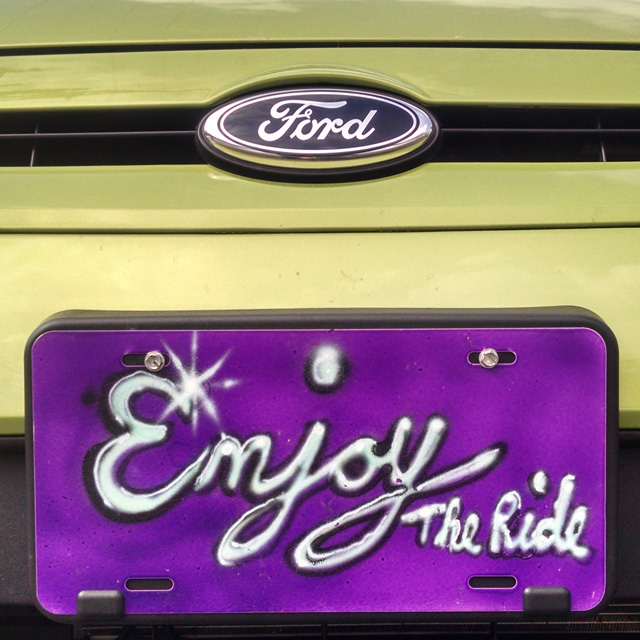 SHPurple_enjoy the ride